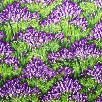 View more about Lavender